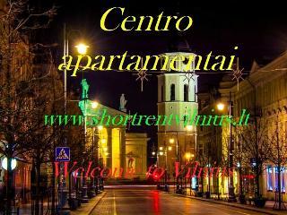 2r. flat Rotundo str. - Vilnius vacation rentals