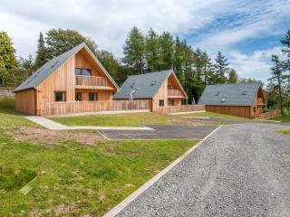 Four Bedroom hot tub lodge in Dumfries 102785 - Newton Stewart vacation rentals