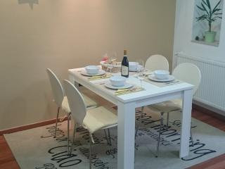 Cozy 2 bedroom Zagreb Apartment with Internet Access - Zagreb vacation rentals