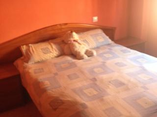 Room in Guadalajara from 50 km Madrid - Siguenza vacation rentals