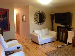 ** New ** Great Downtown Apartment close to Metro - Montreal vacation rentals