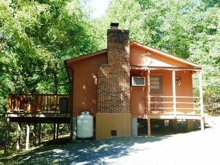 Nice House with DVD Player and Toaster - New Market vacation rentals