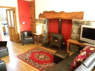 Ty Llwyd Cottage - Trawsfynydd vacation rentals