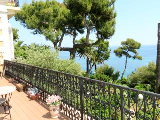 LOVELY APARTMENT PALAIS MIRE JUAN - Cannes vacation rentals