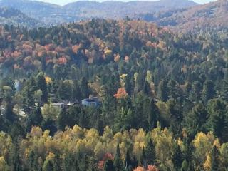 Laurentian Chalet - Val David vacation rentals