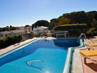 Casa Ponte, moradia familiar central, ideal para familias - Branqueira vacation rentals