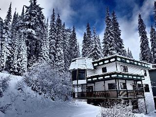 The Stellar Star on Spencer Lane - Silver Star Mountain vacation rentals