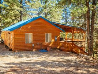 Beautiful House with Porch and Linens Provided - Duck Creek Village vacation rentals