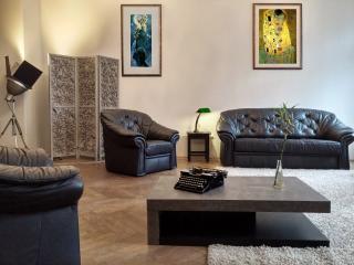 Beautiful trendy Loft 82 sqm in Budapest Center - Budapest vacation rentals