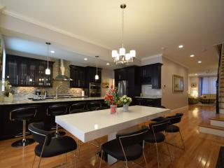 UltraLuxe Apt in Boston Brownstone in Prime Area - Brookline vacation rentals