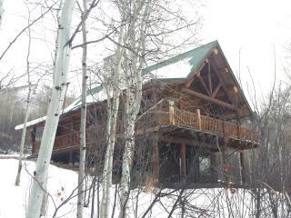 COZY MOUNTAIN CABIN ABOVE RUEDI RESERVOIR - Basalt vacation rentals