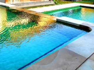 1 Bedroom Villa With Pool in Pejeng - Ubud Suburb - Pejeng vacation rentals