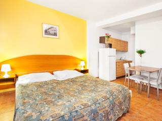Komfortable Appartement mit Frühstück und Wi-Fi - Prague vacation rentals