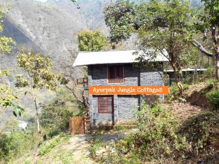 Beautiful 4 bedroom Vacation Rental in Rishikesh - Rishikesh vacation rentals