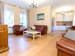 Superior 1 BR Apartment-Town hall sq. - Vilnius vacation rentals