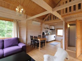 Beautiful 2 bedroom Condo in Borgholm - Borgholm vacation rentals