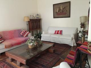 Apartment with Argentine style furnishing in Las Cañitas - Migueletes and S. B. de Palermo (285CA) - Buenos Aires vacation rentals