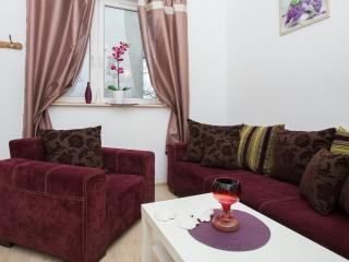 1 bedroom Apartment with Washing Machine in Krakow - Krakow vacation rentals