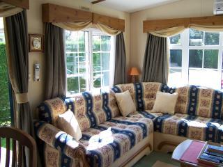 Mobil home classé excellence tout confort - La Palmyre-Les Mathes vacation rentals