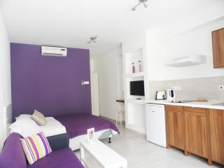 Rainbow - Purple Studio Apartment - Ayia Napa vacation rentals