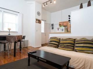 Beautiful 2Bed Boston-Logan Airport-TrainBlue line - Boston vacation rentals