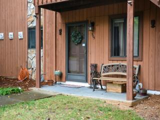 The Skeleton Key's: The Cozy Contmeporary  Condo - Winston Salem vacation rentals