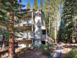 Mountain condo with forest views, shared pool, & room for 4 - Kings Beach vacation rentals