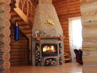 Log cabin with lake, sauna, jacuzzi - Vyshhorod vacation rentals