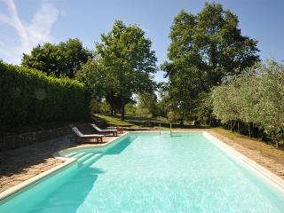 Fontanella, Sleeps 8 - Siena vacation rentals