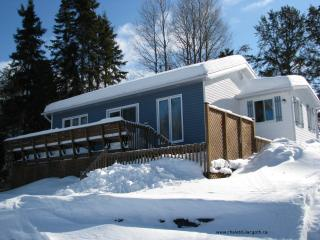 Nice Chalet with Swing Set and Television - La Baie vacation rentals