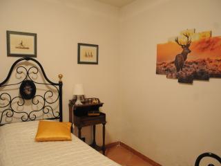 Cozy 2 bedroom House in Bibbiena - Bibbiena vacation rentals