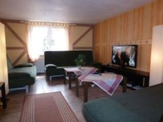 Vacation Apartment in Koblenz - 17954 sqft, spacious, parking and satellite TV available (# 1481) - Koblenz vacation rentals