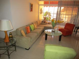 Spacious and Colorful, Close from everything Nice! - Santo Domingo vacation rentals