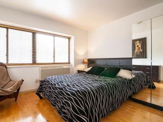 Nice Condo in New York City with A/C, sleeps 6 - New York City vacation rentals