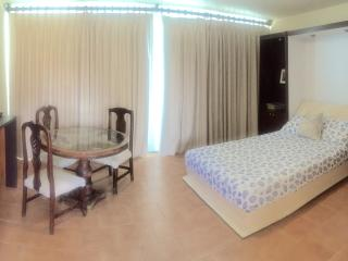 BEACHFRONT STUDIO NEXT TO CONDADO MARRIOTT HO - Miramar vacation rentals