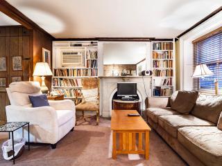GV-Iris 1 - New York City vacation rentals