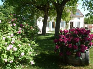 Offrez vous une halte près du vignoble Bourguignon - Magny-lès-Aubigny vacation rentals