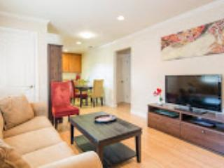 Cherry Cola!  2/1 in Downtown Mountain View - Mountain View vacation rentals