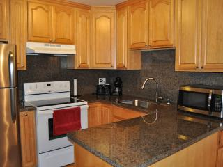 Chips & Salsa 2/2 Light & Bright Mountain View - Mountain View vacation rentals