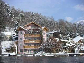 1 bedroom Condo with Internet Access in Millstatt - Millstatt vacation rentals