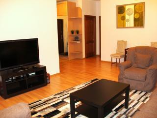 1 Bedroom apartment at Nurly Tau - Almaty vacation rentals