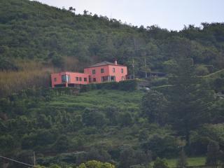 Pico do Cavaco  -  RR AL Nº 127 - Rabo de Peixe vacation rentals