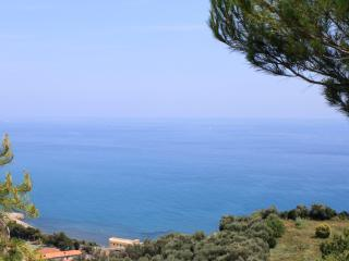 Flat in countryside with sea view - San Lorenzo al Mare vacation rentals