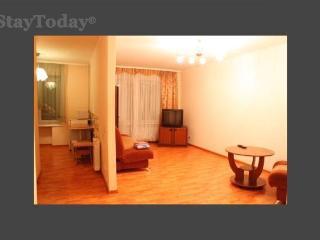 Bright 1 bedroom Condo in Krasnoyarsk - Krasnoyarsk vacation rentals