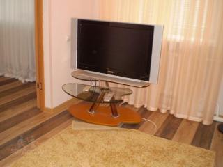 Cozy 2 bedroom Apartment in Dachnyy - Dachnyy vacation rentals