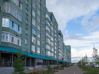 Comfortable 1 bedroom Apartment in Kazan - Kazan vacation rentals