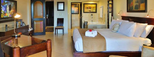 PUERTO PLATA PRESIDENTIAL SUITE-1 bed/2 bed/Studio - Puerto Plata vacation rentals