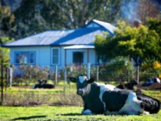 4 bedroom Farmhouse Barn with Deck in Corryong - Corryong vacation rentals