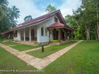 Wonderful Villa in Kosgoda with Satellite Or Cable TV, sleeps 6 - Kosgoda vacation rentals
