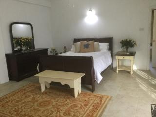 Ocean View 3Br 5.5 bath sleeps 6 to 12 - Kingstown vacation rentals